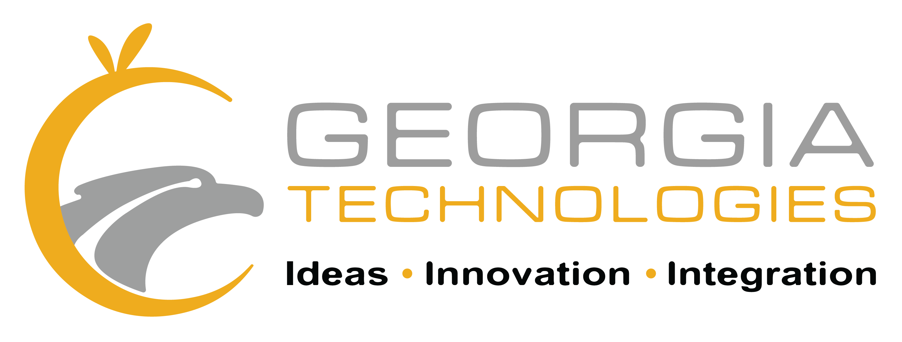 GA Software Technologies